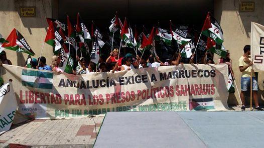 Fandas: Ahora más que nunca, libertad para los presos políticos saharauis