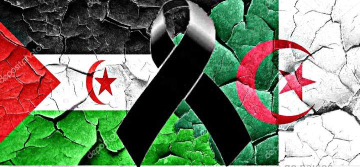 Condolencias CEAS-Sahara accidente aereo