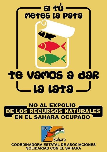 CEAS-Sahara exige el respeto de la legalidad internacional en relación a los recursos naturales del Sahara Occidental